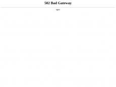 Screenshot der Domain lampenschirmstore.de