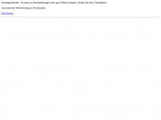 Screenshot der Domain langzeitauto.de