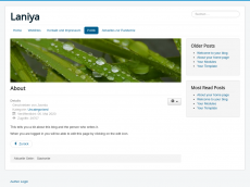 Screenshot der Domain laniya.de