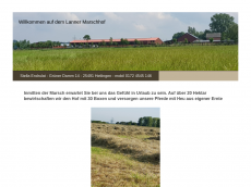 Screenshot der Domain lanner-marschhof.de