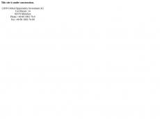Screenshot der Domain lionag.de