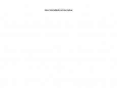 Screenshot der Domain lzk-versicherungsmakler.de