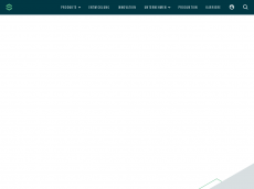 Screenshot der Domain silver-atena.de