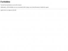 Screenshot der Domain simpex.net