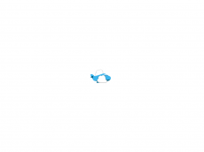 Screenshot der Domain sunrise-logistic.de