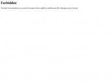 Screenshot der Domain teppich-bley.de