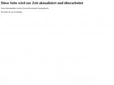 Screenshot der Domain ubag-berlin.de